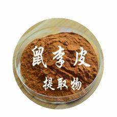 鼠李皮 現貨包郵 天然鼠李皮植物提取物 優質鼠李皮原料粉 10:1
