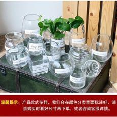 现代插花富贵透明玻璃中等客厅摆件简约绿萝大号竹水培中等玻璃瓶
