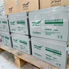 科华阀控式密封免维护蓄电池6-FM-65-12V65AH 原装科华蓄电池