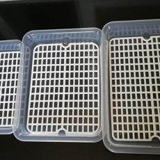 透明长方形水果盘塑料双层沥水盘茶盘隔水托盘厨房收纳置物盘