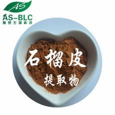 石榴多酚 現貨包郵 天然石榴皮植物提取物 優質鞣花酸原料粉 10:1
