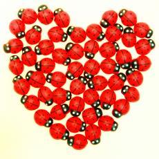 花盆装饰贴 木制仿真七星瓢虫贴 拍摄道具 红色木质甲虫装饰贴