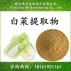 白菜浓缩粉 包邮 白菜提取物/包菜提取物 白菜速溶粉 10:1