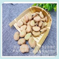 炒货蚕豆 油炸蚕豆 豆瓣酱蚕豆 供应批发各种蚕豆 精品蚕豆 手选