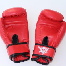 Boxing Gloves 拳擊手套 Training Boxing Glove Ringside Fight