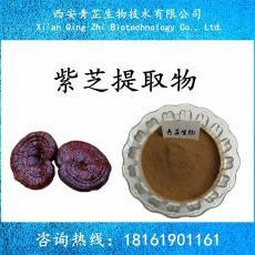 青芷生物 包邮 量大从优 紫芝提取物 10:1 黑芝提取物