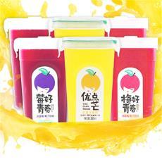 動康冰藍莓汁楊梅汁芒果汁瓶裝冰鎮新鮮純果蔬飲料冷飲包郵