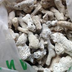 珊瑚岩石 装饰用珊瑚石. 供应珊瑚石 珊瑚骨 过滤水用珊瑚砂