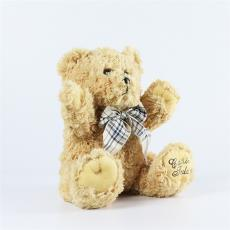 毛绒玩具定制经典泰迪熊高端礼物赠品精品公仔大号送女友抖音爆款